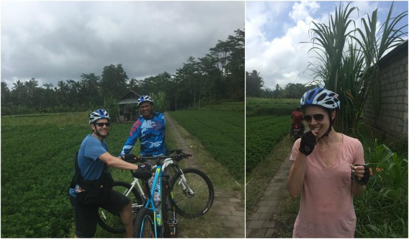 Bike Ride Bali